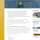 Website Redesign for The Cogent Executive